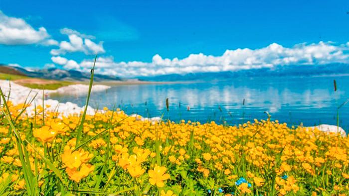 伊犁賽里木湖一日遊
