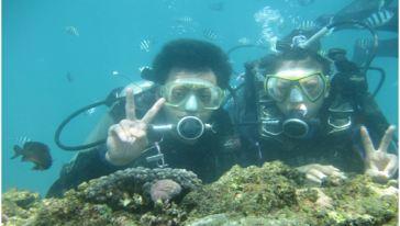 大东海百乐潜水
