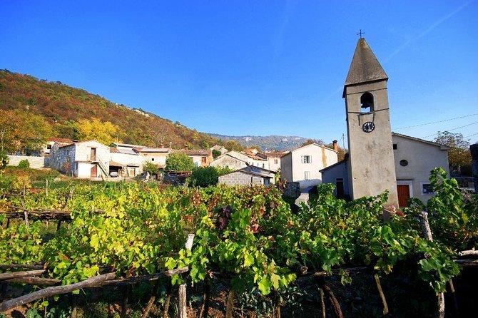 Culinary day trip to Slovenian Istria