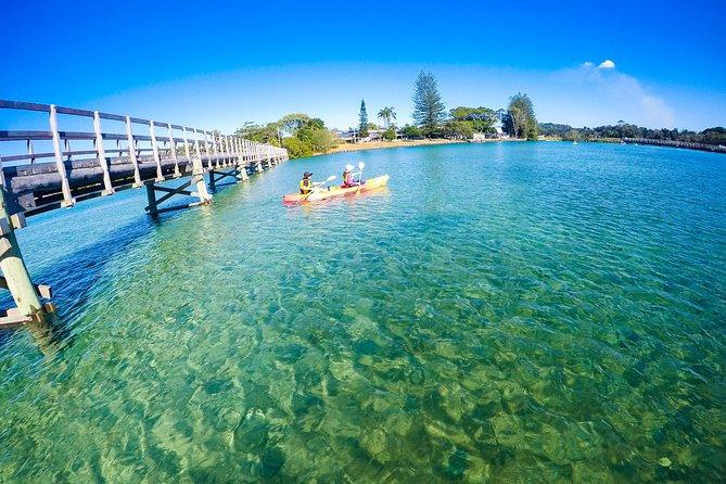 Brunswick River Nature Kayak Tour from Byron Bay