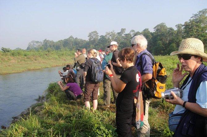 Full Day Jungle Safari Tours in Chitwan National Park Nepal