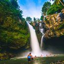 Bali Swing Combination With Tegenungan Waterfall & Luwak Coffee