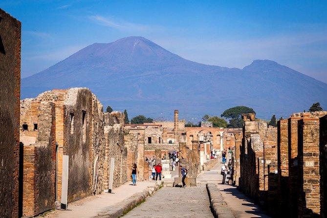 Ruins of Pompeii & Mt Vesuvius Volcano Day Trip from Rome