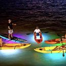Light the Night Kayak or Stand-Up Paddleboard Tour in Vancouver
