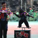 上海野生動物園一日遊
