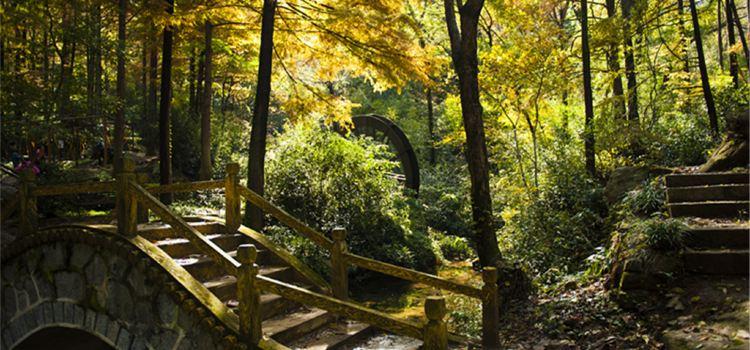 보얼덩산림공원3