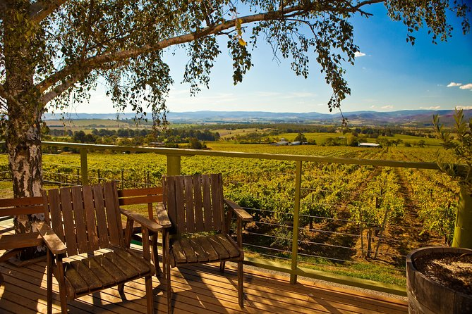 Yarra Valley Small-Group Wine Tour with 2 Course Lunch and Morning Tea