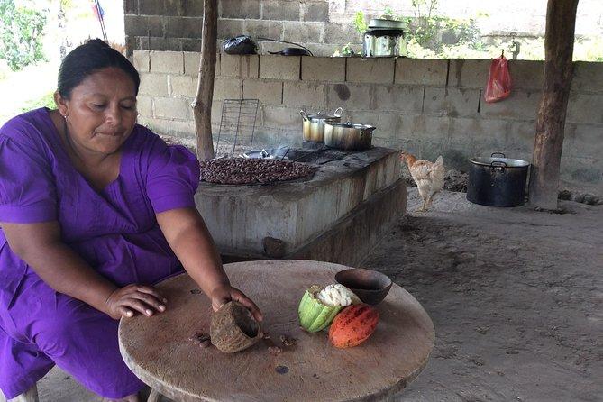 Organic Chocolate Farm and Mayan Ruins