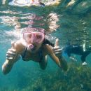 Manly Snorkel Trip and Nature Walk with Local Guide