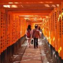 Fushimi Inari and Sake Tasting Tour