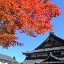 Day Tour from Hokkaido: Noboribetsu, Lake Toya and Lake Shikotsu