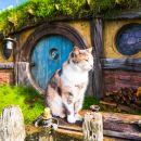 Hobbit Village Movie Set Tour