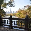 Private NYC Central Park Walking Tour