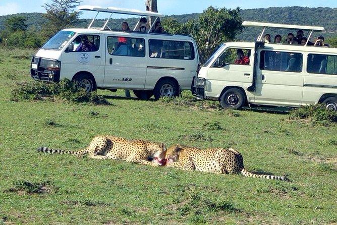 Maasai Mara 2-Day Safari Tour from Nairobi