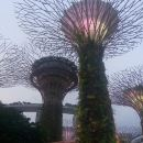 Private Full Day Singapore Highlights Tour with Private Vehicle,Lunch and Dinner