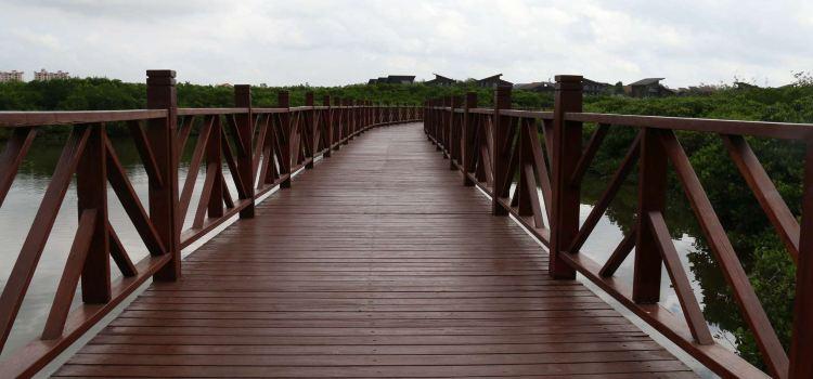 富力紅樹灣濕地公園2