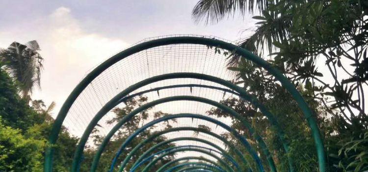 Bo'ao Asia Bay Resort2