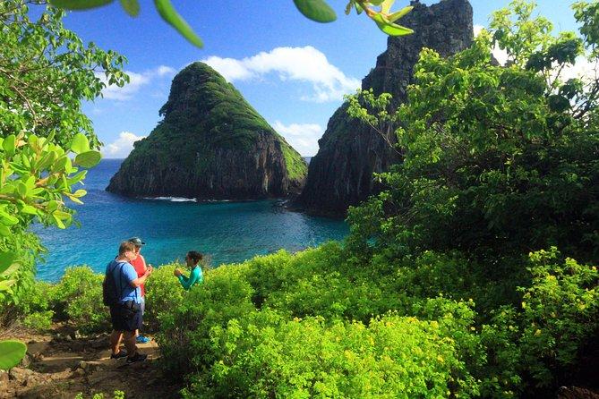 Noronha: Emerald of the Atlantic Trail