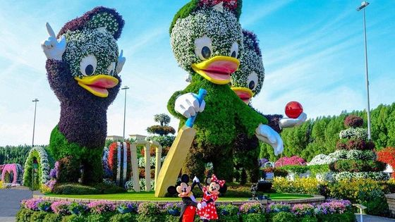 Miracle Garden+Dubai Frame with Sharing Transfers