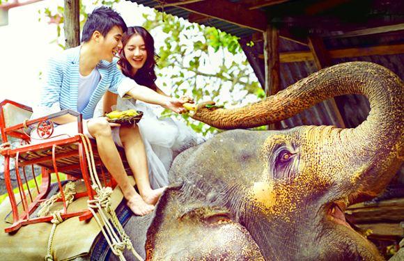 布吉攀牙灣國家公園白水漂流+卧佛廟+騎大象/高空滑索/ATV 越野車一日遊(多項目隨心選)