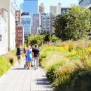 High Line and Chelsea Small Group Tour