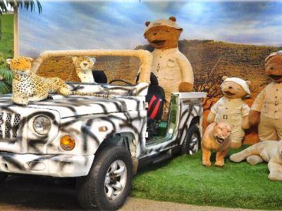 Teddy Bear Safari