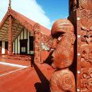 Tauranga Shore Excursion: Rotorua City Hop-On Hop-Off Tour