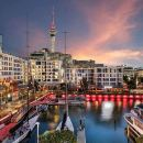Local Night Markets and Auckland's Amazing Night Lights