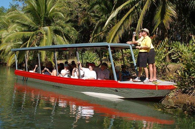 Damas Island Mangrove Boat Tour from Manuel Antonio