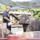 Private Guided Ethical Tour Kanchanaburi Elephant Sanctuary