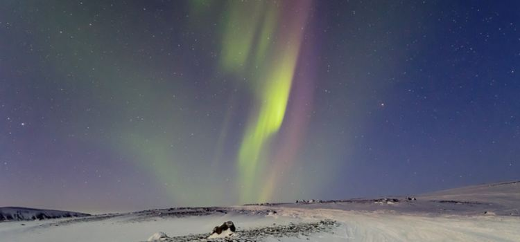 The Northern Light Center2
