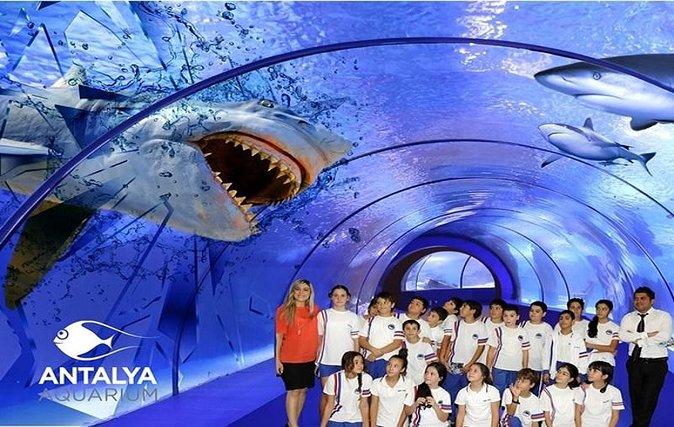 Antalya Aquarium Tour from Kemer, Beldibi, Kiris, Camyuva, Goynuk, Tekirova
