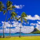 Majestic Circle Island Eco Tour from Waikiki
