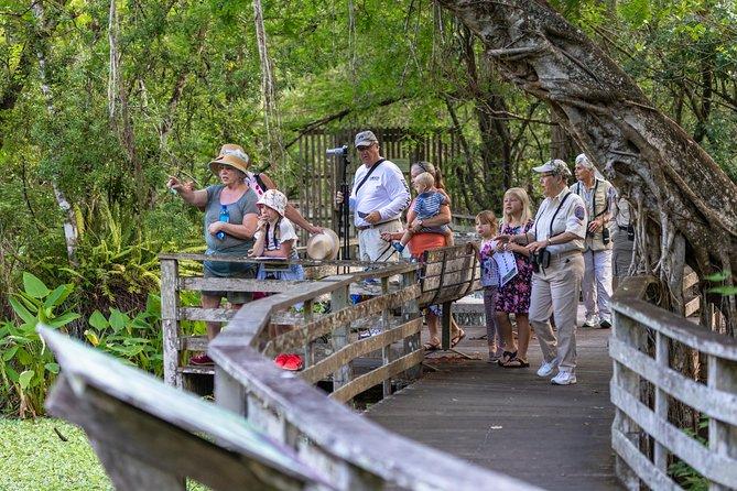 Miami Everglades Safari Park Airboat Adventure with Transport