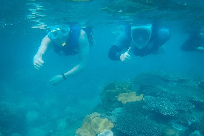 """Snorkeling and watching coral at """"Cu Lao Xanh"""" island - Quy Nhon Tour - Local guide"""
