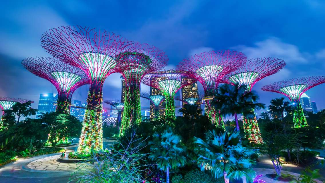 Gardens by the Bay Ticket (with Cloud Forest + Flower Dome)