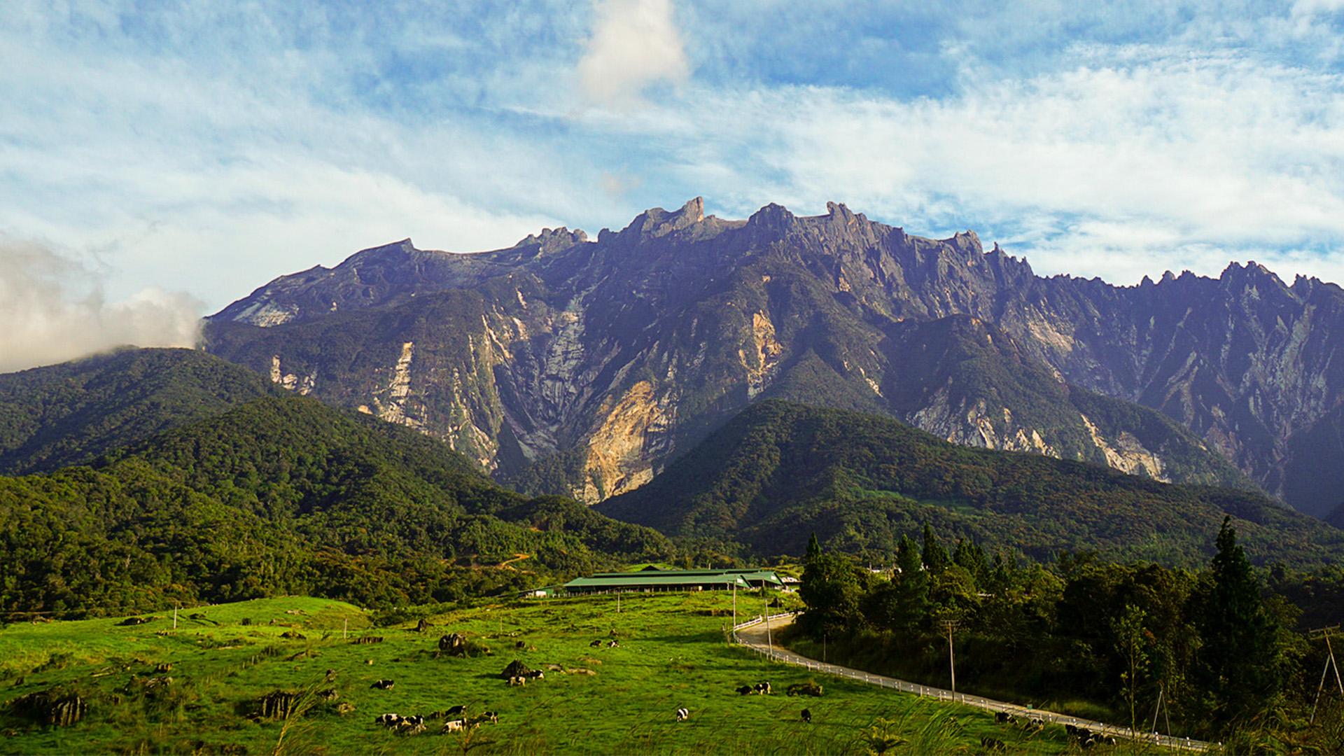 【沙巴神山一日遊】神山、神山牧場、波令溫泉、樹頂吊橋(小團拼團)