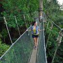 Poring Hot Springs Tour from Kota Kinabalu including Treetop Canopy Walk
