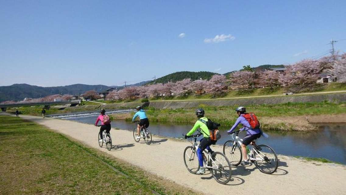 Kyoto Small-Group or Private Bike Tour