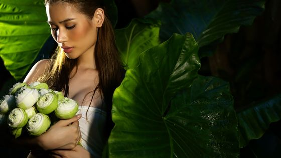 50% Off | Oasis Spa Massage in Bangkok for Adults & Kids (Transport Included)