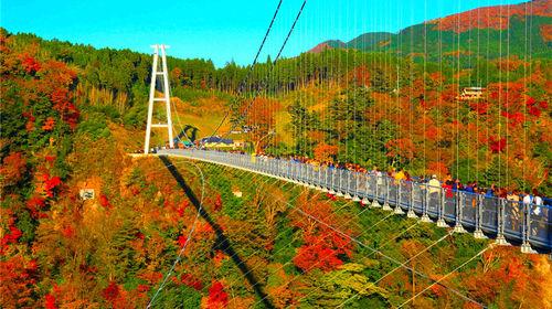 Image result for 九重梦吊桥