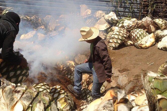 Private Tour: Mezcal Day Tour in Oaxaca
