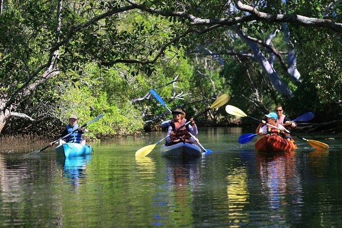 Brunswick Heads Kayak Eco-Tour and Stand-Up Paddleboarding