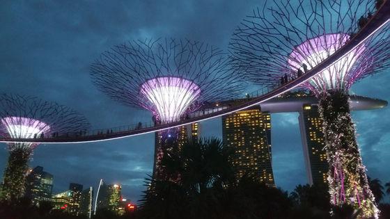 싱가포르 야경끝판왕 가든스바이더베이 랩소디쇼 스펙트라쇼 리버크루즈 루프탑 사테거리