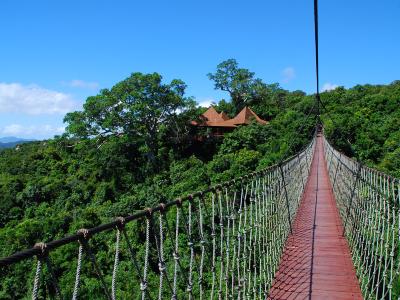 야룽완 열대천당삼림공원(아룡만 열대천당삼림공원)