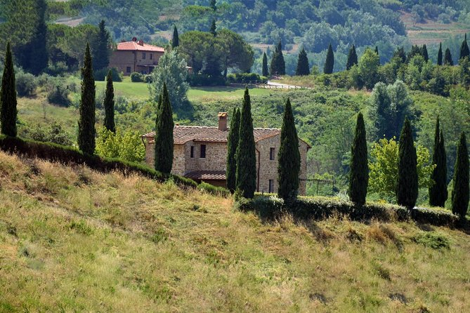 Chianti Classic Tour and Tasting from Bologna