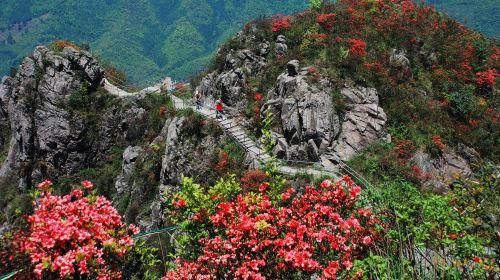 Qingyuan Jinzi Mountain Ecological Tourism Area