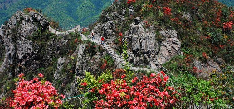清遠金子山原生態旅遊風景區1