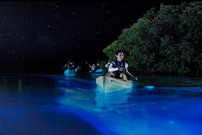 Bioluminescence Night Kayaking Tour of Merritt Island Wildlife Refuge