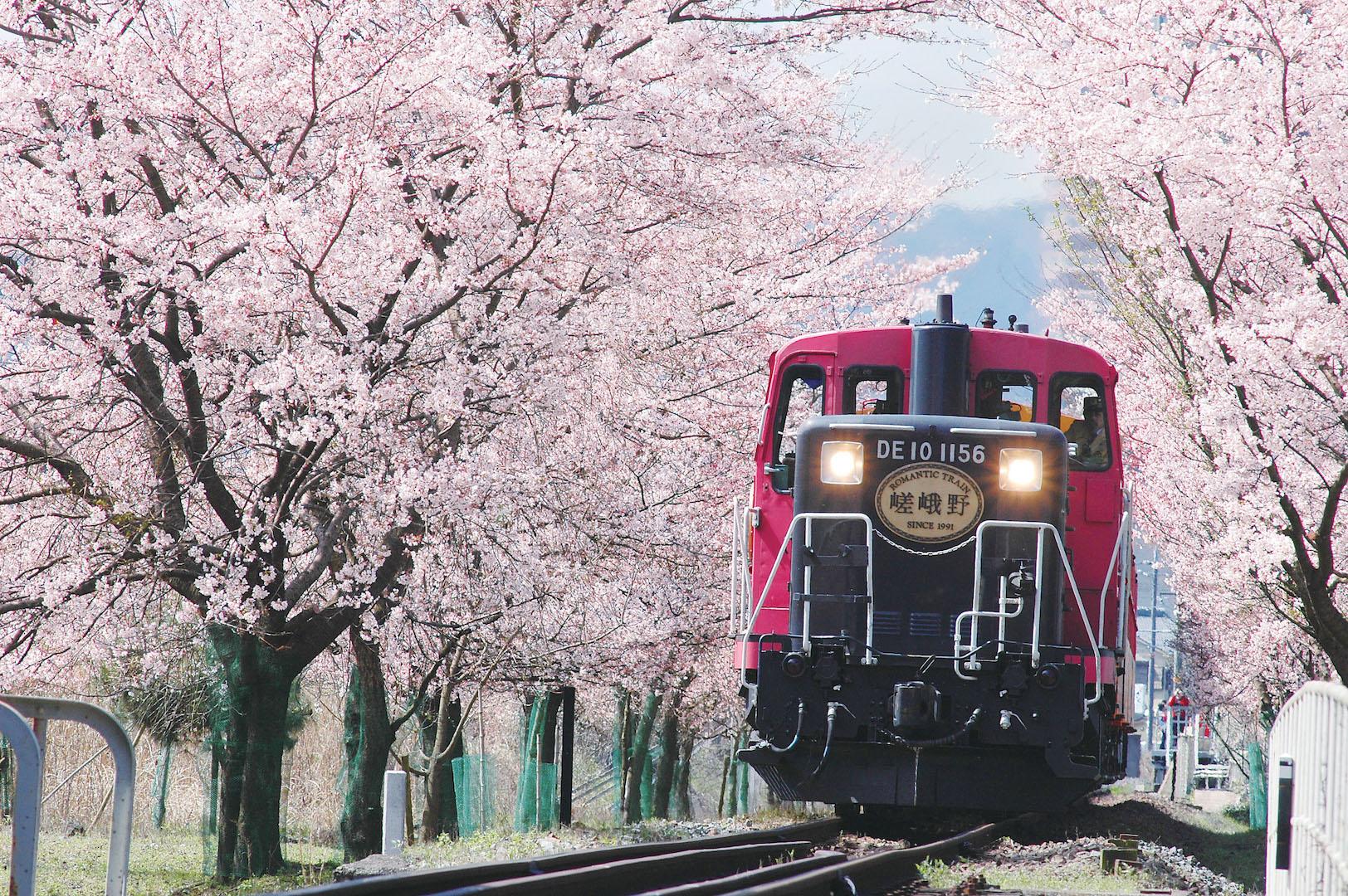 【日本語ガイド】京都・嵐山1日ツアー:嵯峨野トロッコ列車、清水寺、伏見稲荷大社